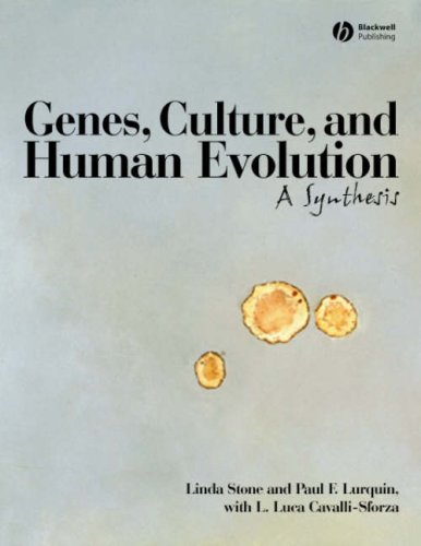 Genes, Culture, and Human Evolution A Synthesis  2006 edition cover