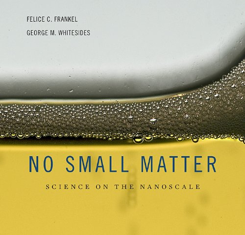 No Small Matter Science on the Nanoscale  2009 edition cover