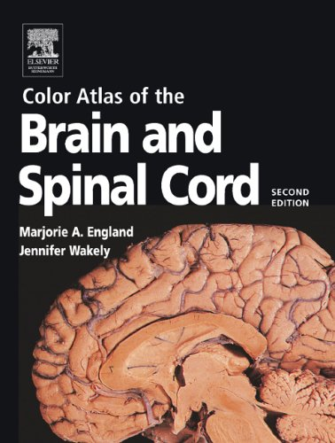 Color Atlas of the Brain and Spinal Cord An Introduction to Normal Neuroanatomy 2nd 2005 (Revised) edition cover