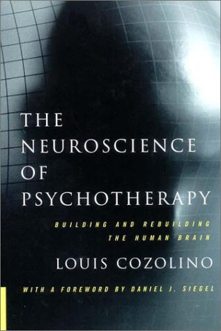 Neuroscience of Psychotherapy Buillding and Rebuilding the Human Brain  2002 edition cover