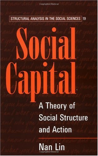 Social Capital A Theory of Social Structure and Action  2002 edition cover