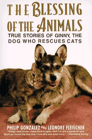 Blessing of the Animals True Stories of Ginny, the Dog Who Rescues Cats N/A 9780060928674 Front Cover