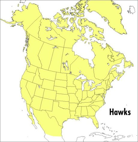 Field Guide to Hawks of North America  2nd 2001 edition cover