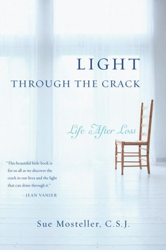 Light Through the Crack Life after Loss  2006 9780385516679 Front Cover