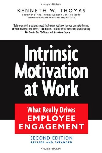 Intrinsic Motivation at Work Building Energy and Commitment 2nd 2009 (Revised) edition cover