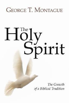 Holy Spirit Growth of a Biblical Tradition N/A edition cover