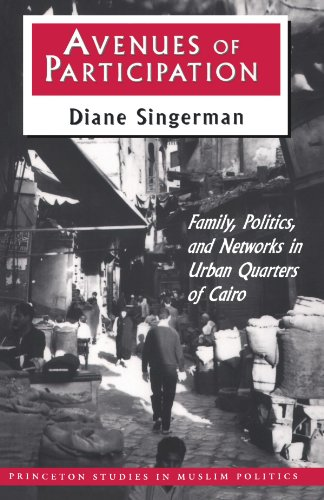 Avenues of Participation Family, Politics, and Networks in Urban Quarters of Cairo  1996 edition cover