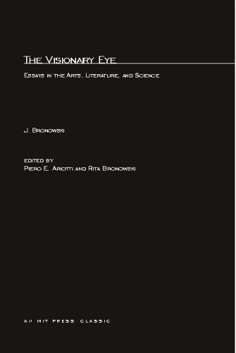 Visionary Eye Essays in the Arts, Literature, and Science  1981 9780262520683 Front Cover