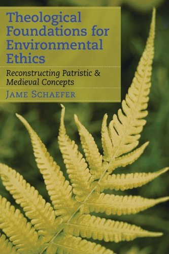 Theological Foundations for Environmental Ethics Reconstructing Patristic and Medieval Concepts  2009 edition cover