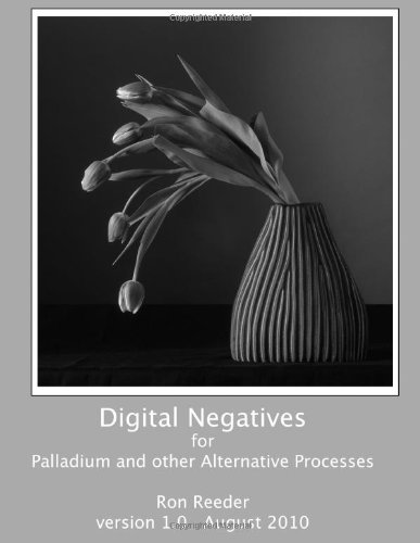 Digital Negatives for palladium and other alternative Processes  N/A edition cover