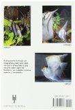 Escalares / Angelfish: Cuidados, Crianza, Especies Y Variedades/ Keeping and Breeding Them in Captivity  2006 edition cover