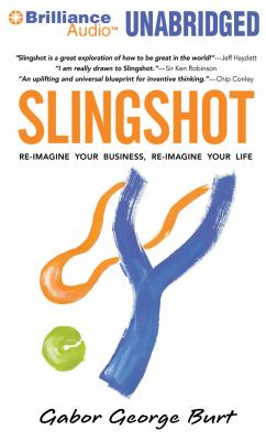 Slingshot: Re-Imagine Your Business, Re-Imagine Your Life  2011 edition cover