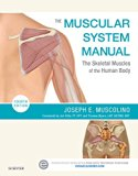 The Muscular System Manual: The Skeletal Muscles of the Human Body  2016 9780323327701 Front Cover