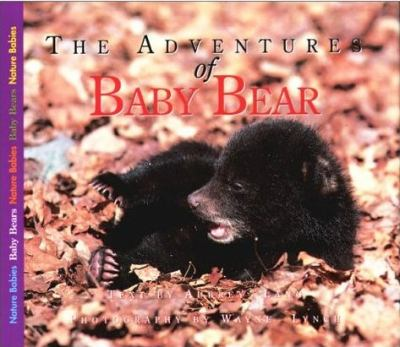 Adventures of Baby Bear   2001 9781550416701 Front Cover