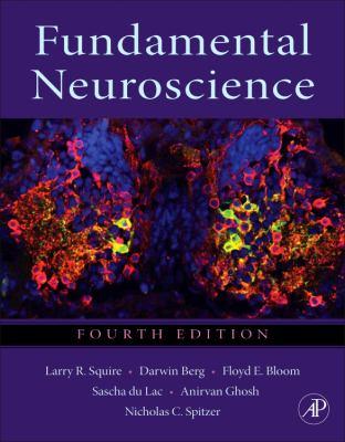 Fundamental Neuroscience  4th 2012 edition cover
