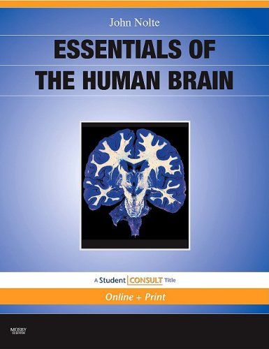 Essentials of the Human Brain With STUDENT CONSULT Online Access  2010 edition cover