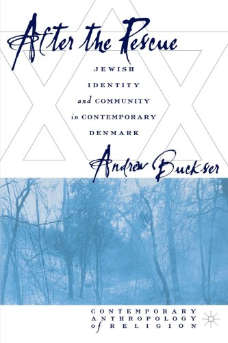 After the Rescue Jewish Identity and Community in Contemporary Denmark  2003 (Revised) edition cover