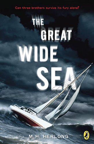 Great Wide Sea   2010 edition cover