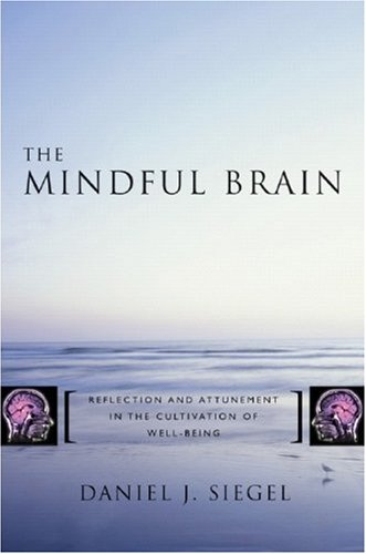 Mindful Brain Reflection and Attunement in the Cultivation of Well-Being  2007 edition cover
