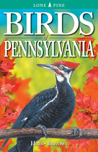 Birds of Pennsylvania   2005 (Revised) edition cover