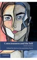 Consciousness and the Self New Essays  2014 9781107414716 Front Cover