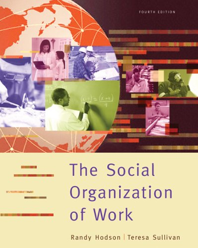 Social Organization of Work  4th 2008 edition cover