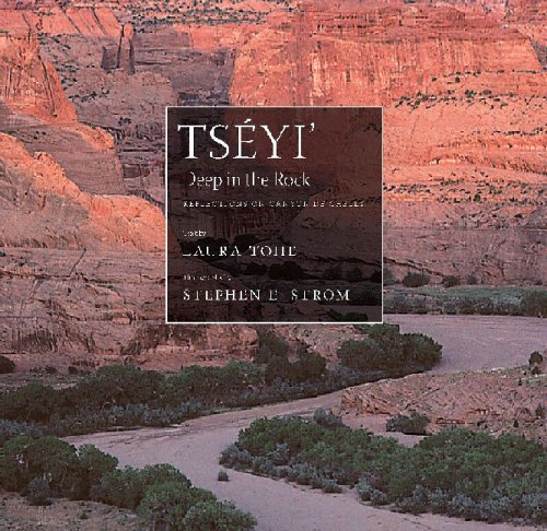 Ts�yi' - Deep in the Rock Reflections on Canyon de Chelly  2005 edition cover