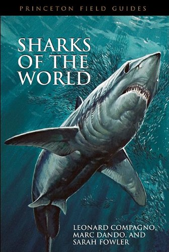 Sharks of the World   2005 edition cover