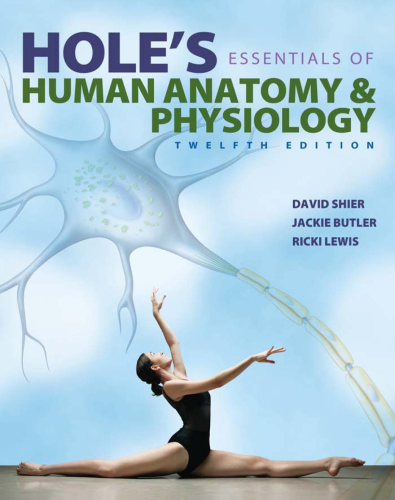 Hole's Essentials of Human Anatomy and Physiology  12th 2015 9780073403724 Front Cover