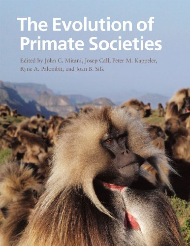 Evolution of Primate Societies   2012 9780226531724 Front Cover
