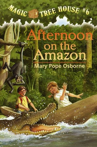 Afternoon on the Amazon   1995 edition cover