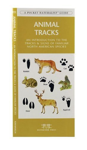 Animal Tracks A Folding Pocket Guide to the Tracks and Signs of Familiar North American Species  2000 edition cover