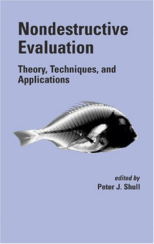Nondestructive Evaluation Theory, Techniques and Applications  2002 edition cover