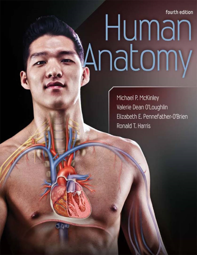 Human Anatomy 4th 2014 9780073525730 Front Cover