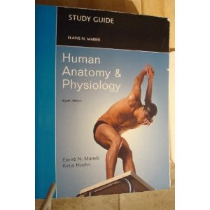 Study Guide for Human Anatomy and Physiology  8th 2010 edition cover