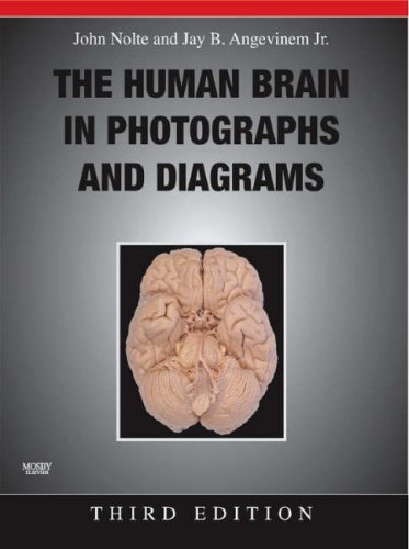 Human Brain in Photographs and Diagrams  3rd 2007 (Revised) edition cover