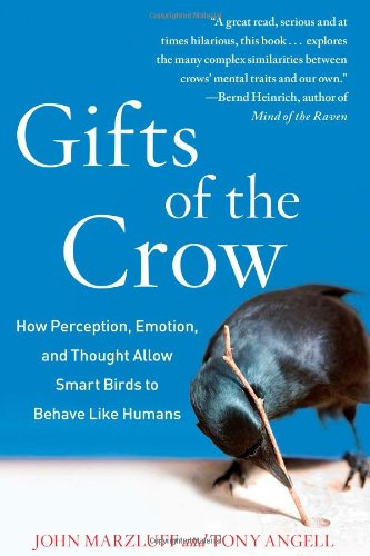 Gift of the Crow How Perception, Emotion, and Thought Allow Smart Birds to Behave Like Humans  2012 edition cover