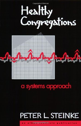 Healthy Congregations A Systems Approach N/A edition cover