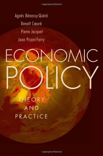 Economic Policy Theory and Practice  2010 edition cover