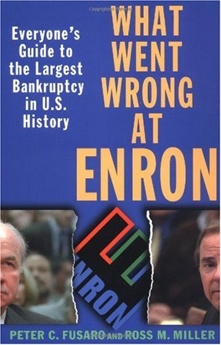 What Went Wrong at Enron Everyone's Guide to the Largest Bankruptcy in U. S. History  2002 edition cover