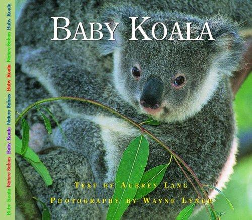 Baby Koala   2004 9781550418743 Front Cover