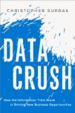 Data Crush How the Information Tidal Wave Is Driving New Business Opportunities  2014 edition cover