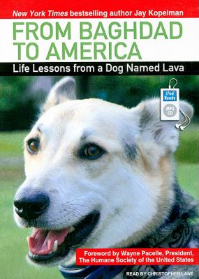 From Baghdad to America: Life Lessons from a Dog Named Lava  2008 9781400158751 Front Cover
