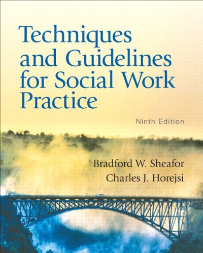 Techniques and Guidelines for Social Work Practice  9th 2012 edition cover