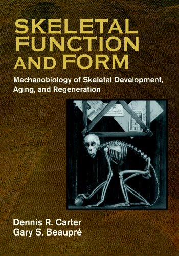 Skeletal Function and Form Mechanobiology of Skeletal Development, Aging, and Regeneration  2007 9780521714754 Front Cover