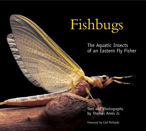 Fishbugs The Aquatic Insects of an Eastern Fly Fisher  2005 9780881506754 Front Cover