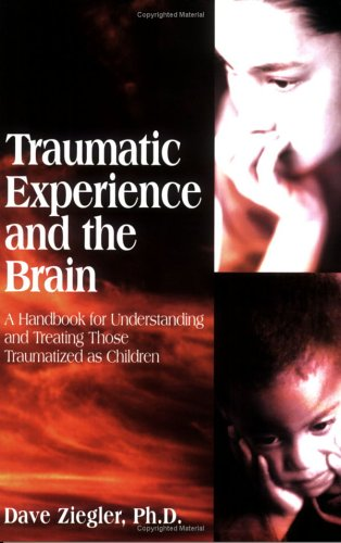 Traumatic Experience and the Brain : A Handbook for Understanding and Treating Those Traumatized As Children 1st 2002 edition cover