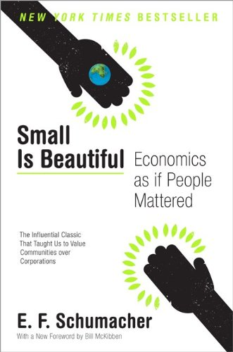 Small Is Beautiful Economics as if People Mattered  2010 edition cover