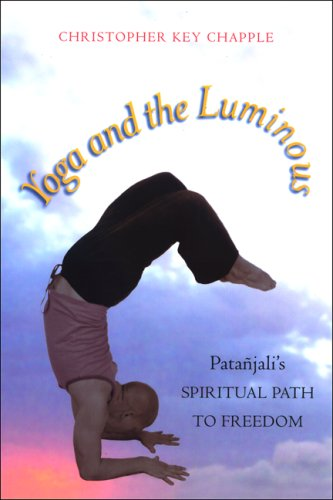Yoga and the Luminous Pata�jali's Spiritual Path to Freedom  2008 edition cover
