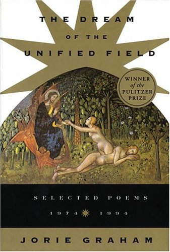 Dream of the Unified Field  Reprint  edition cover